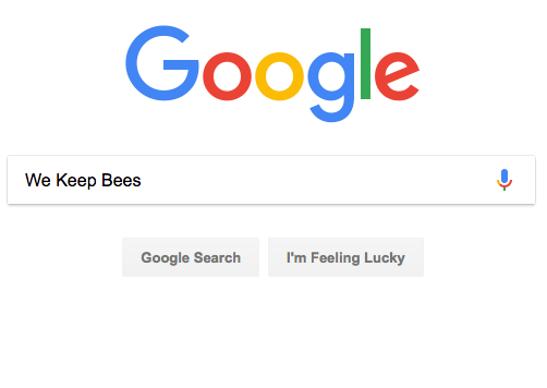 google search engine screenshot