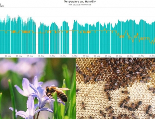 Better beekeeping with smart hives