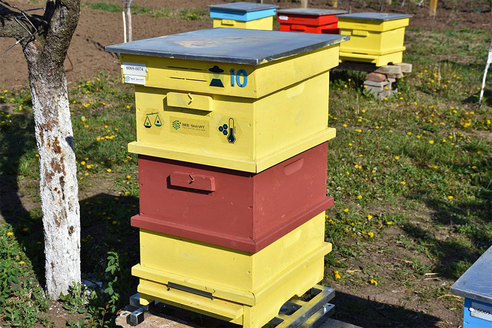 fully equipped smart beehive